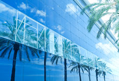 Green palms, hotels Royalty Free Stock Image