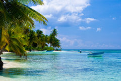 Green palms on a white sand beach. With blue sky Stock Photo
