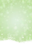 Green paper background with butterfly and plants Stock Images
