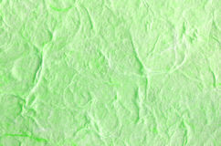 Green paper background with fiber structure Stock Photos