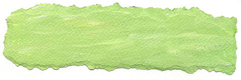 Green paper background with torn edges Stock Photos