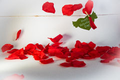 Green paper heart with wings and congratulation fixed with clothespin on a cord and red petals falling. Royalty Free Stock Photo