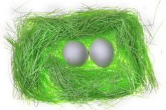 Green paper  nest Royalty Free Stock Photos