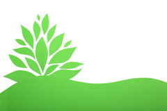 Green paper plant Royalty Free Stock Photos