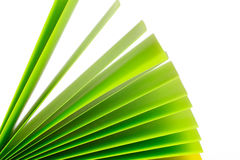 Green paper records Royalty Free Stock Photos