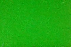 Green paper textur för mullbärsträdet Arkivbild