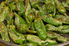 Green paprika pimento patron Stock Images
