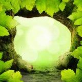 Green Paradise stock image