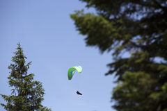 Green paraglider between trees Stock Images