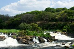Green park. A waterfall in the park of Puerto-Ordaz, Venezuela Royalty Free Stock Photos