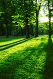 green park zdjęcia stock