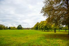 Green park during autumn surrounded by trees in London, United Kingdom stock photos