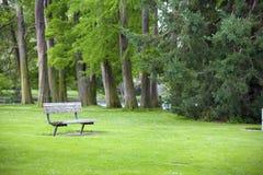 Green park with a bench Stock Photos