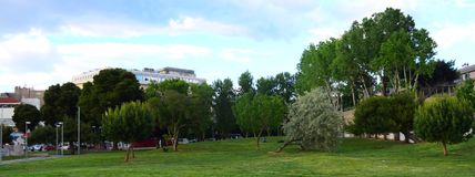 Green park in the city. A picture of a green park of big and small trees,in a greek town thessaloniki,in a spring day Royalty Free Stock Photo