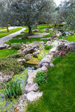 Green park with creek path grass tree calm Stock Images