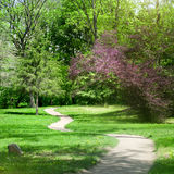 Green park with a crossing path in spring Stock Photo