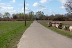 Green Park dans Frankenthal Allemagne avec le ciel bleu images libres de droits