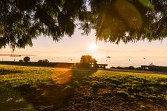 Green Park with Foggy Winter Sunrise over Lake Leman and Boat royalty free stock image