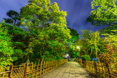 Green park in Kyoto at night Stock Photography