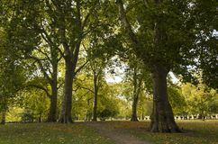 Green Park London Great Britain, October 16 2017. People walking in the park, Beautiful autumn day. Colorful trees and leafs lying on grass royalty free stock images