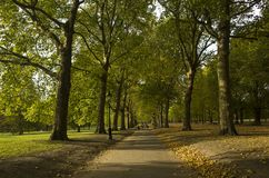 Green Park London Great Britain, October 16 2017. People walking in the park, Beautiful autumn day. Colorful trees and leafs lying on grass royalty free stock photo