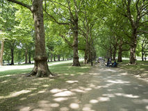 Green Park, London Stock Photos