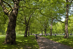 Green Park in London Stock Images