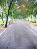 Green Park. In the middle of Bangkok , Thailand Royalty Free Stock Photo