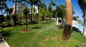 Green park in modern promenade -  Limassol, Cyprus Stock Photos