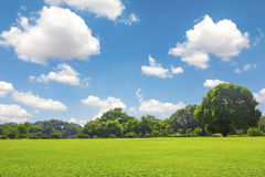 Green park outdoor with blue sky cloud Royalty Free Stock Photo