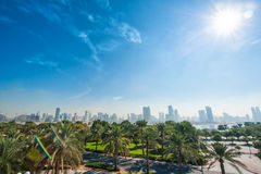Green park with palm trees on the background of skyscrapers Royalty Free Stock Image