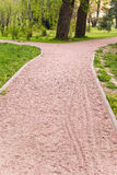 Green park with path. Spring beauty green park with path and trees Royalty Free Stock Photos
