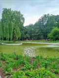 Krakowsky Park in Krakow Poland royalty free stock images