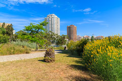 Green park in Portimao town Royalty Free Stock Images