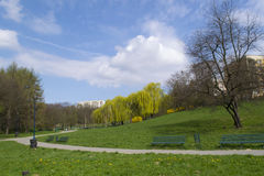 Green park in residential area Royalty Free Stock Photo