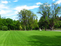 Green park in spring time Stock Image