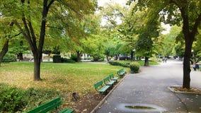 Green park in Stara Zagora. STARA ZAGORA,BULGARIA -15.06.16: green park with trees and benches in Stara Zagora,Bulgaria Royalty Free Stock Photos