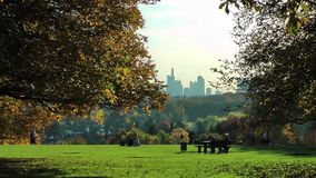 Green Park in Sunny Day. Video stock video footage