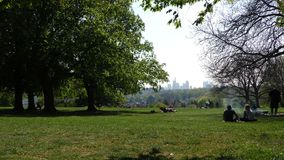 Green Park in Sunny Day. Video stock footage