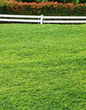Green park stock image