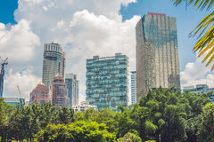 Green park with tropical plants on the background of the city skyline. Ecology concept Stock Photography