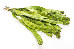 Green Parkia Royalty Free Stock Image