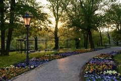 Green parks in Poland Stock Image