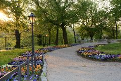 Green parks in Poland Stock Images