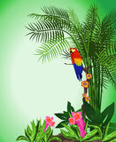 Green Parrot Background. Green tropical background with flowers and a parrot Stock Photos