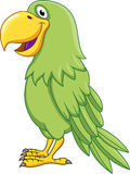 Green parrot cartoon Stock Photography