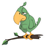 Green parrot cartoon Royalty Free Stock Images