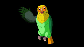 Green Parrot Greets. Classic Handmade Animation with Alpha Channel. stock video