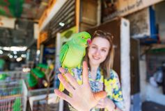 Green parrot sitting on the young woman`s hand stock photography