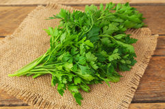 Green parsley leaves Royalty Free Stock Photography